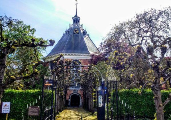 Bericht Kerkenraad bezoek kerkdiensten Koepelkerk